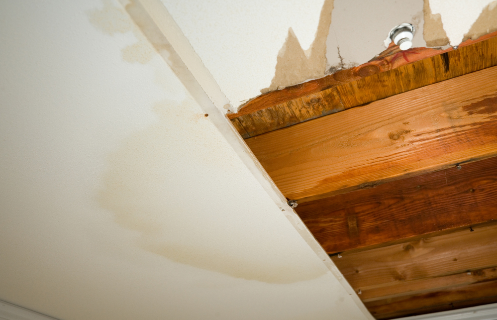 What To Do When There Is Damage To Your Rental Property